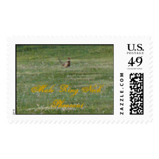 Male Ring Neck Pheasant Postage