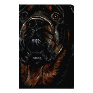 Male Rottweiler Stationery