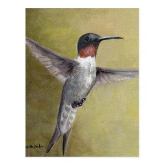 Male Ruby Throated Humming Bird Art Postcard