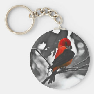 Male Scarlet Tanager Keychain