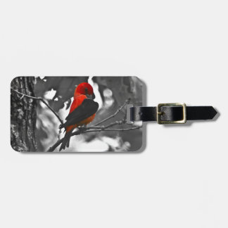 Male Scarlet Tanager Luggage Tag