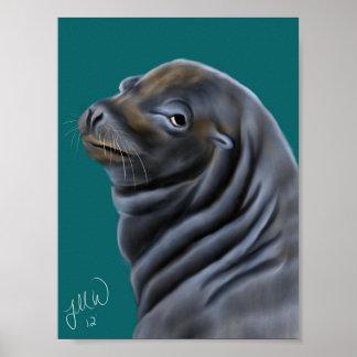 Male Sea Lion Poster