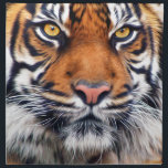 "Male Siberian Tiger Paint Photograph Cloth Napkin<br><div class=""desc"">The Siberian Tiger close-up photograph painting art done in painting with vibrant brown orange and beautiful yellow brown eyes.</div>"