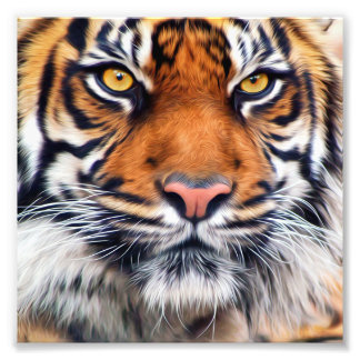 Male Siberian Tiger Paint Photograph