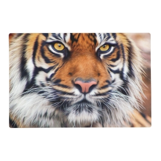 Male Siberian Tiger Paint Photograph Placemat at Zazzle