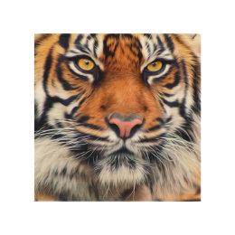 Male Siberian Tiger Paint Photograph Wood Wall Decor