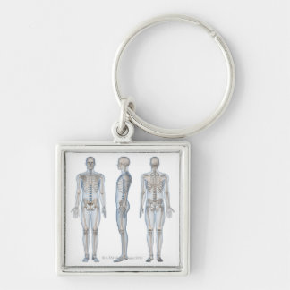 Male Skeleton 2 Keychain