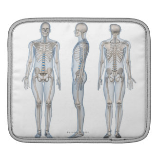 Male Skeleton 2 Sleeves For iPads