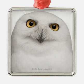Male Snowy Owl (Bubo scandiacus) is a large owl Metal Ornament