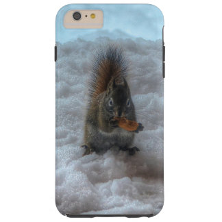 Male Squirrel Standing in Snow Wildlife Photo Tough iPhone 6 Plus Case