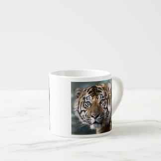 Male Sumatran Tiger (Panthera tigris sumatrae) Espresso Cup