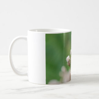 Male Tiger Swallowtail Classic White Coffee Mug