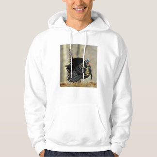 Male turkey strutting, Illinois Hoodie