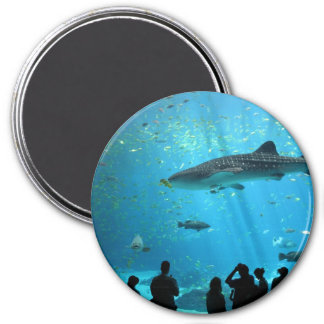 Male Whale Shark 3 Inch Round Magnet