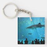 Male Whale Shark Acrylic Key Chains