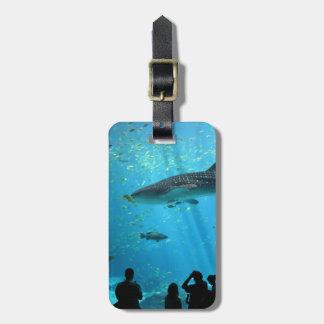 Male Whale Shark Bag Tag