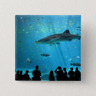 Male Whale Shark Button