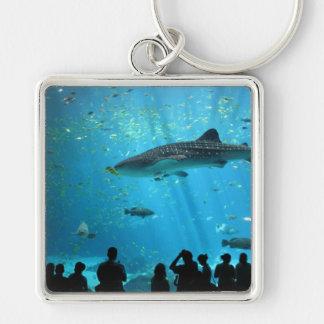 Male Whale Shark Keychain