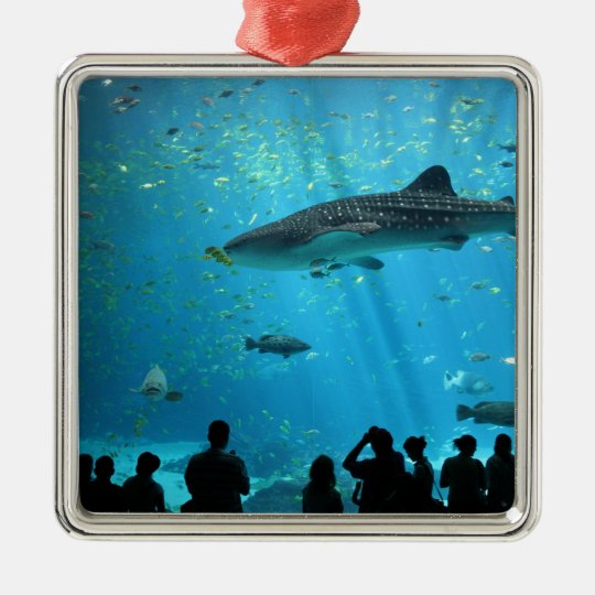 Male Whale Shark Metal Ornament