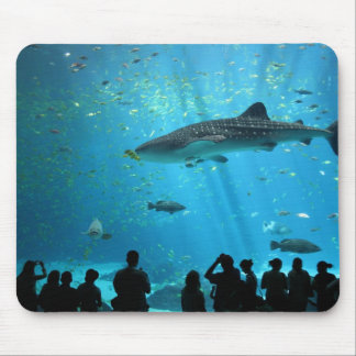 Male Whale Shark Mouse Pad