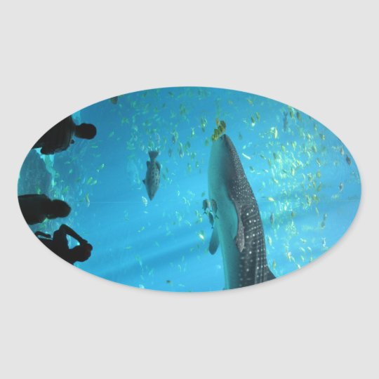 Male Whale Shark Oval Sticker