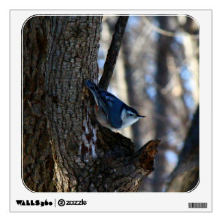 Male White-Breasted Nuthatch In Tree Wall Sticker