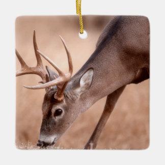 Male whitetail deer grazing ceramic ornament