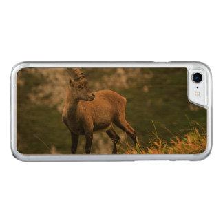 Male wild alpine, capra ibex, or steinbock carved iPhone 8/7 case