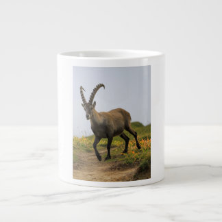 Male wild alpine, capra ibex, or steinbock large coffee mug
