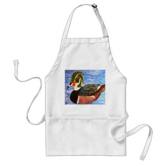 Male Wood Duck Adult Apron