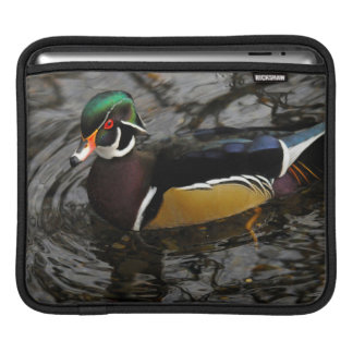 Male Wood Duck At Crystal Springs Rhododendron Sleeve For iPads