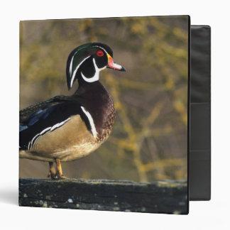 Male wood duck, Canada Vinyl Binder