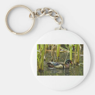 Male Wood Duck Keychains