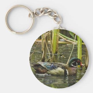 Male Wood Duck Keychain
