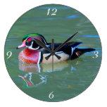 Male Wood Duck on pond Clocks