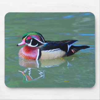 Male Wood Duck on pond Mouse Pad