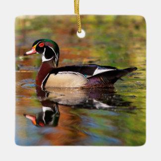 Male wood duck swims, California Ceramic Ornament