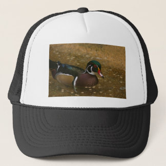 Male Wood Duck Trucker Hat
