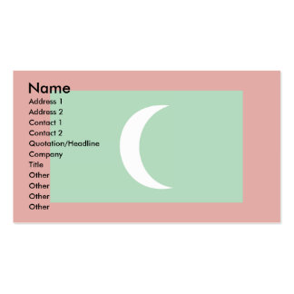 Maledives Flag Double-Sided Standard Business Cards (Pack Of 100)