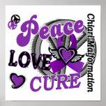 Malformación de Chiari de la curación 2 del amor d Poster