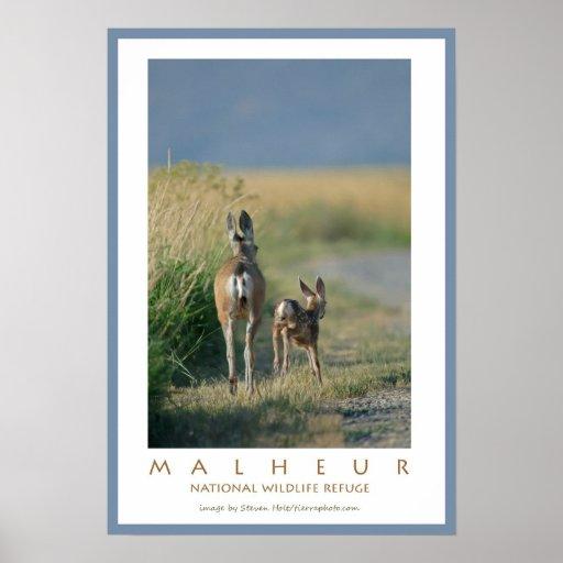 Malheur National Wildlife Refuge Poster