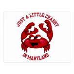 Malhumorado en Maryland Tarjeta Postal