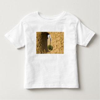 Mali, Djenne. Grand Mosque 2 Toddler T-shirt