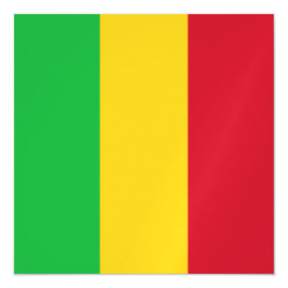 Mali Flag Magnetic Card