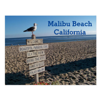 Malibu Beach Postcard- Paradise Cove Seagull Sign Postcard