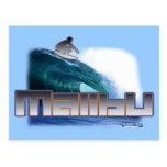Malibu Beach Surfing Post Cards
