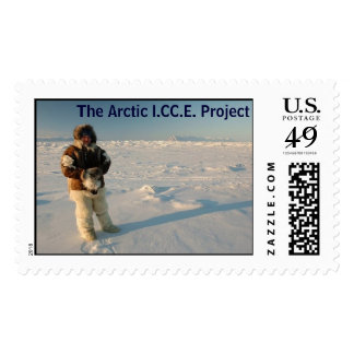 Malin in Arctic, The Arctic I.CC.E. Project Postage Stamps