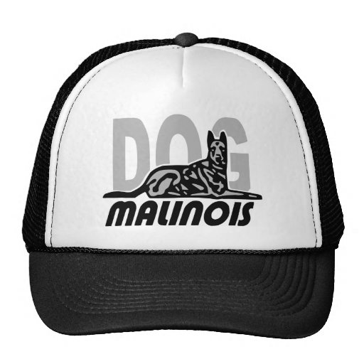 malinois china8 gorros