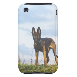 malinois iPhone 3 tough cases