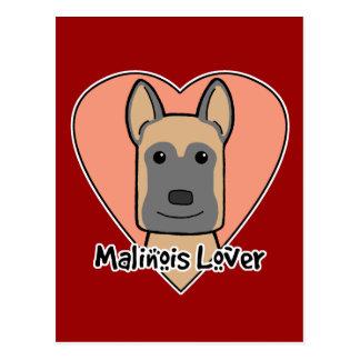 Malinois Lover Postcard